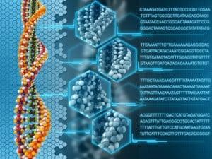 glutathione-genetics.jpg